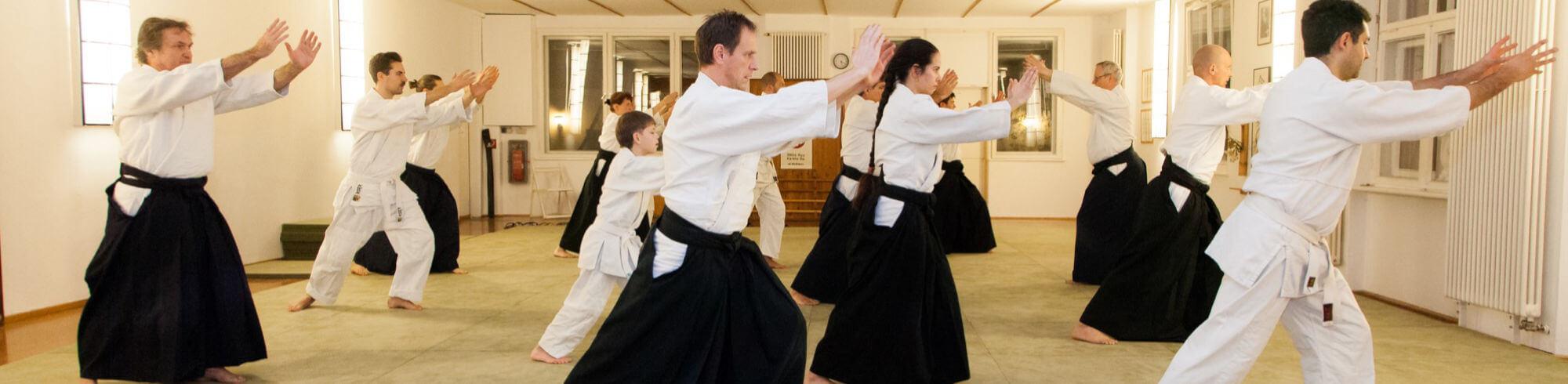 Mehrere Aikido-Meschen von der Seite fotografiert, sie strecken die Arme aus und lehnen sich leicht nasch vorne