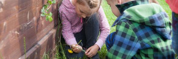 Kinder knien vor einem Hochbeet