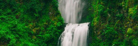 ein wudnerschöner wasserfall in satt grüner umgebung